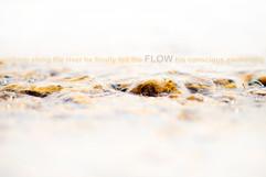 FLOW-KO34279-72type.jpg