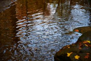 OllisPhoto_KO31632-150ff.jpg