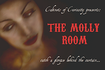 Molly Room flyer front.png