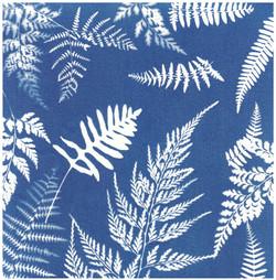 TURN BLUE Helen Turnbull 09 - Copy