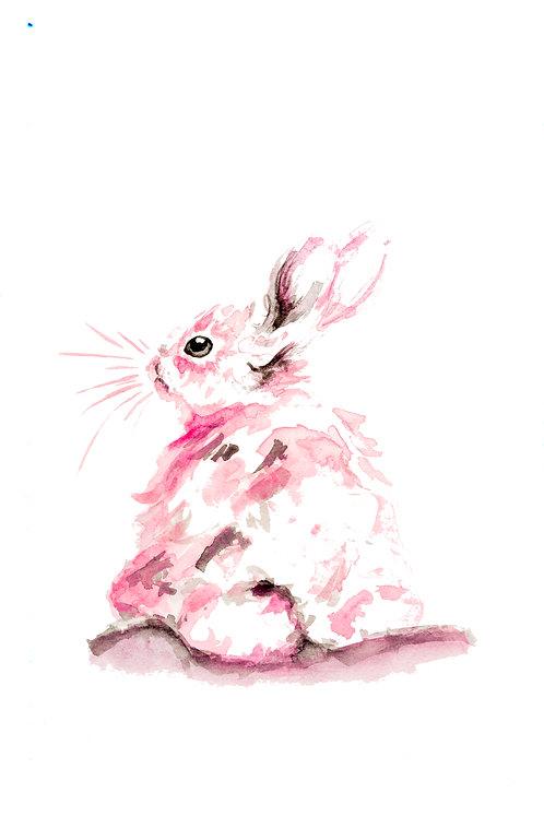 Pink bunny bum Print