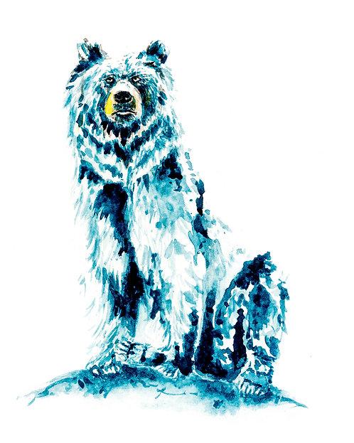 Sitting Blue Bear Print