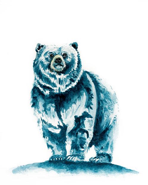 Standing blue bear print
