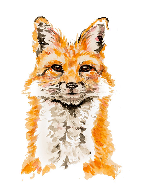Fox Portrait Print