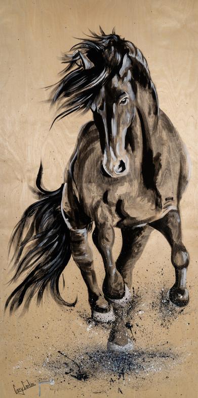 Wild stallion.jpg