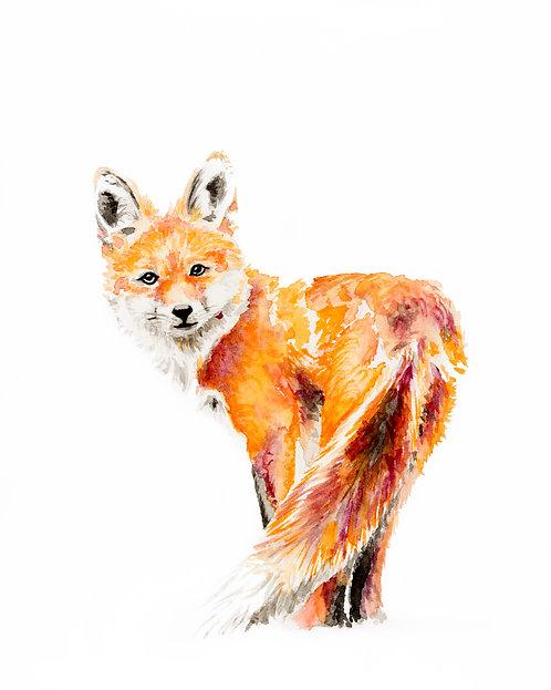 Standing Fox Print