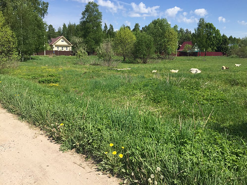 пгт.Козлово, Конаковский район