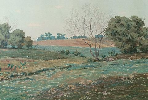 Baker, Karen_K's Field