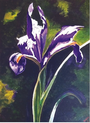 Parham, Marie_Iris Flower
