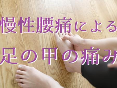 慢性腰痛による足の甲の痛み改善事例 70代女性(五反田 鍼灸院)