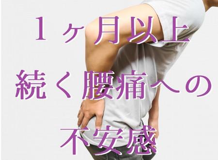 1ヶ月以上続く腰痛への不安感(五反田 鍼灸院)