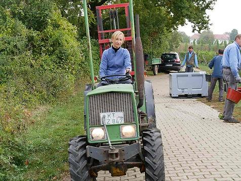 Winzerin Sandra Sauer vom Weingut Horst Sauer aus Escherndorf Franken auf dem Traktor