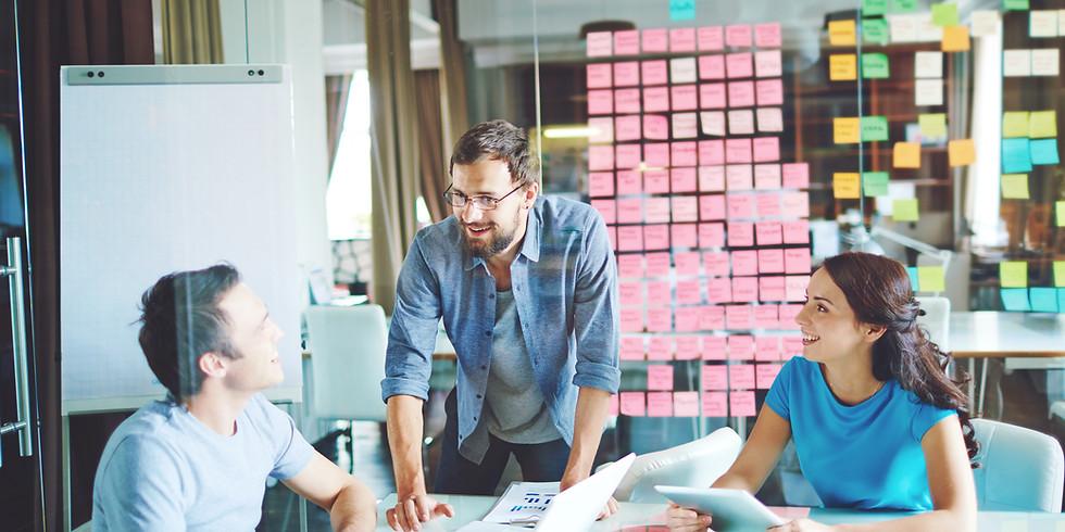 O Novo Empreendedor - Coaching para Empreendedores