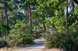 123_Camping_Beauregard_Capfun
