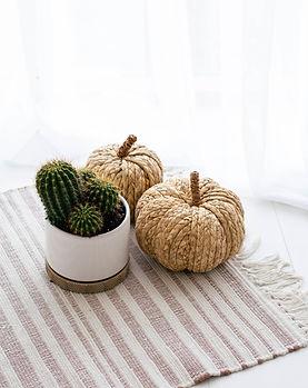 cactus12.jpg