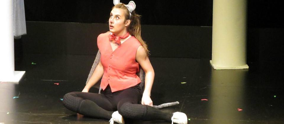 Tales of Custard the Dragon Performance