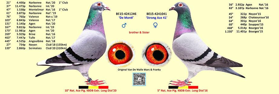 5° & 10° Nat Ace Pigeons KBDB