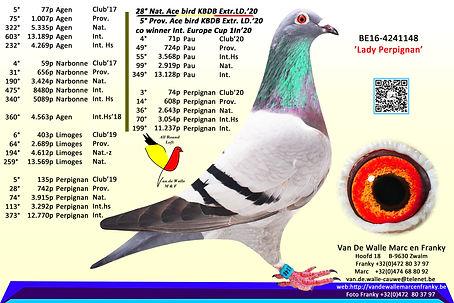 4241148-16  Lady Perpignan.kopie.jpg