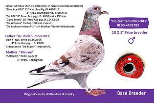 4478783-00 De Zachten Imbrechts kopie.jp