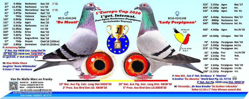 collage europacupteam2020kopie.jpg