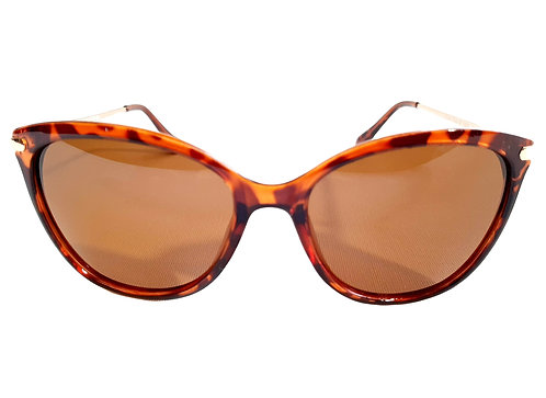 Gafas Polarizadas  BFPZ20-060