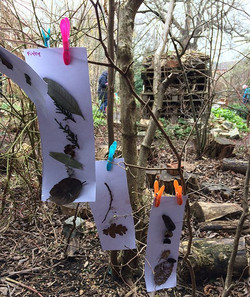 Lots of fun had _foxgloveforestschool today! We spotted blackbirds, listened to stories and sang son