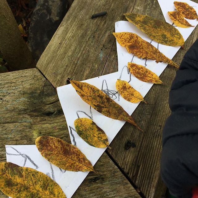 Wonderfully wild crowns made today _foxgloveforestschool #wildthing #forestschool