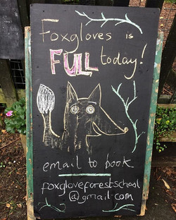 All set up and ready to GO! 🦊🦊#forest school