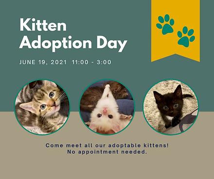Kitten Day.png
