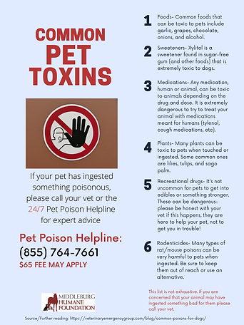 Common Household Pet Toxins.png