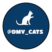 DMV Cats Logo.png