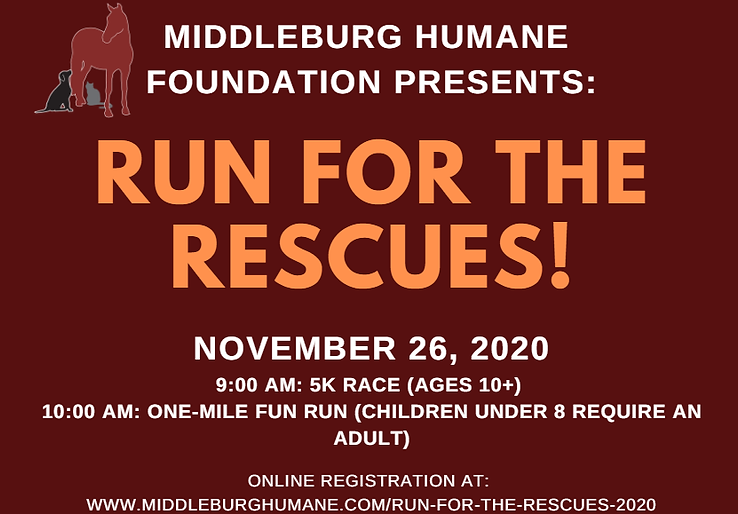 Run for the Rescues Box.png