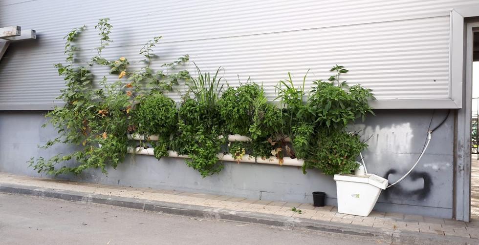 מחלקת רכב - עיריית תל אביב-יפו