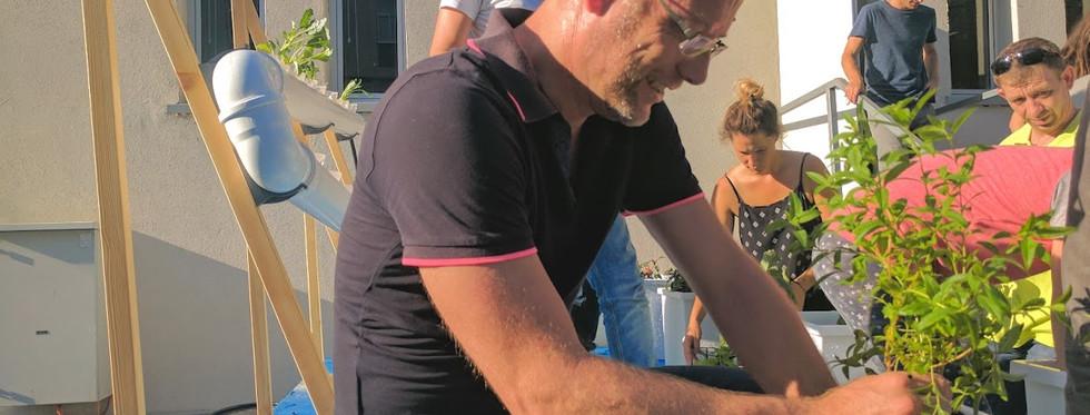 מנהל תכנון- עיריית תל אביב-יפו
