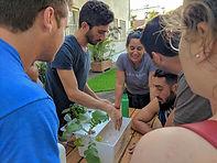 האקדמיה לחקלאות עירונית