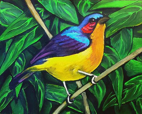 Bird#7