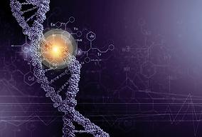 ADN.webp