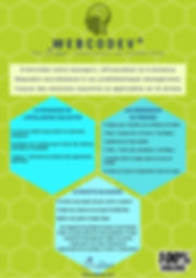 Flyer WebCodev FR.jpg