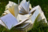 book-pages-books-close-up-grass-415078.j