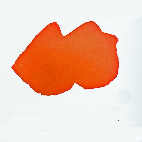 Blood Orange Color Crush Watercolour