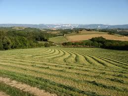Côté Drôme