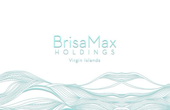 BrisaMax Holdings