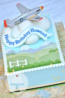 Airplane and Stamp Cake