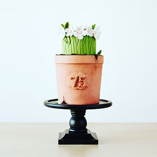 Plant pot cake Craftsy class