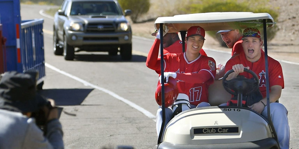 mike trout cart 2.jpg