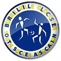 BGYSA_logo.png