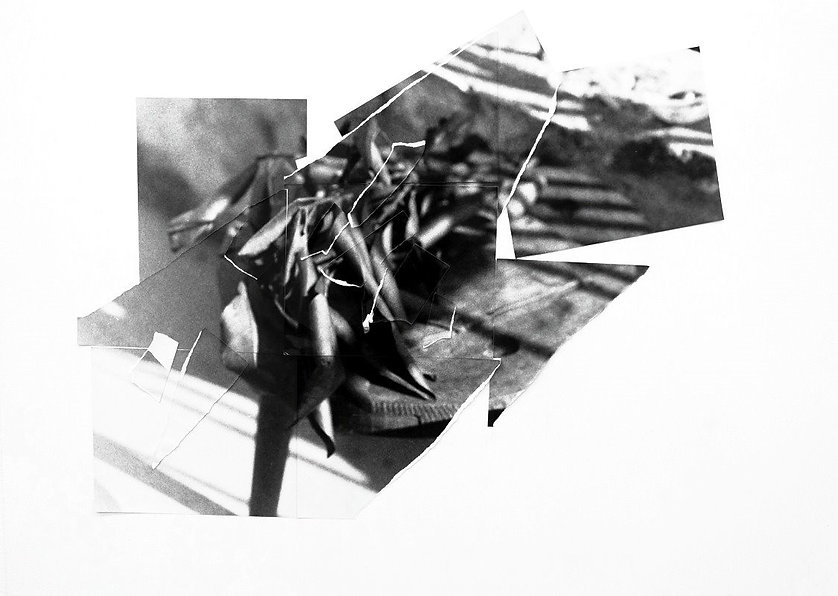 Paper Endures All_W_11_Leaves_3_edited_e