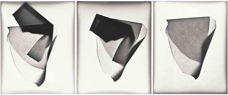 Paper Endures All_W_12_Folds.jpg