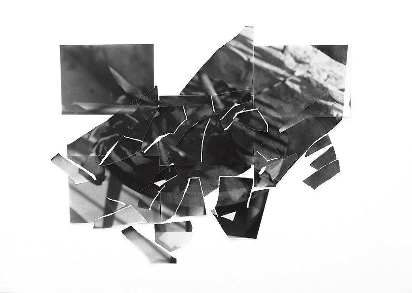 Paper Endures All_W_9_Leaves_1_edited_ed