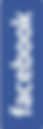 facebook-costado.png